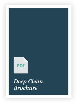 Deep Clean Brochure